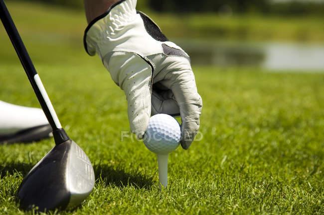 Гольфіст проведення гольф-клуб і м'яч — стокове фото