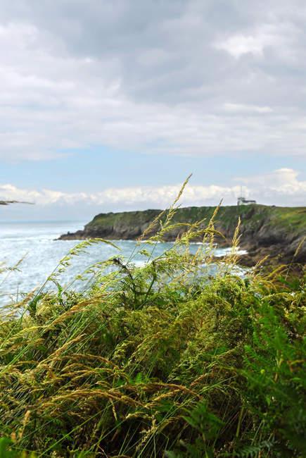 Atlantikküste, Frankreich Landschaft — Stockfoto