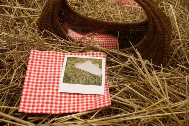 Picknick-Korb und Servietten Heu Gras, — Stockfoto