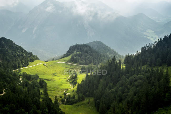 Montagnes des Alpes bavaroises avec arbres verdoyants de la vallée et forêt — Photo de stock