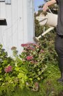 Man pouring blooming flowers from gray watering-pot — Stock Photo