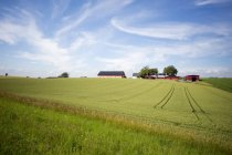 Vista tranquila del campo y casa de campo contra el cielo nublado - foto de stock