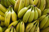 Ver quadro completo de cachos de bananas — Fotografia de Stock