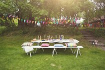 Festive table on green lawn in park — Stock Photo