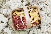 Direttamente sopra la vista di mirtilli rossi e finferli in cestino di vimini — Foto stock