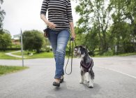Low section of senior woman walking with dog on street — Stock Photo