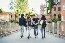 Adolescente maschio che cammina con gli amici sul ponte — Foto stock