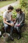 Full length of friends gardening in garden — Stock Photo