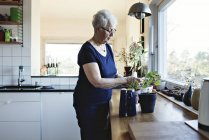 Mujer senior jubilada por plantas en maceta en el mostrador de la cocina en casa - foto de stock