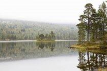 Vista panorámica del lago Femund durante el tiempo en niebla - foto de stock