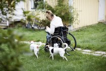 Young disabled woman in wheelchair with dogs in yard — Stock Photo