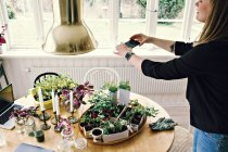 Женщина фотографирует растения на столе в комнате дома — стоковое фото