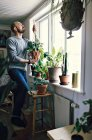 Full length of male environmentalist holding potted plant standing on step ladder by window at home — Stock Photo
