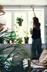 Rear view of female environmentalist hanging potted plant on window in room at home — Stock Photo