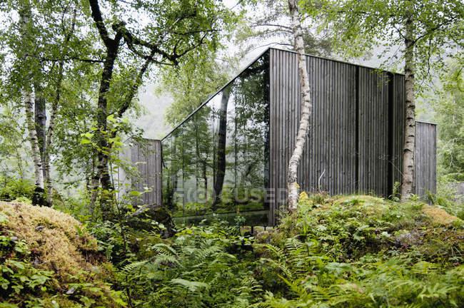 Современный отель с необычным интерьером в лесу — стоковое фото