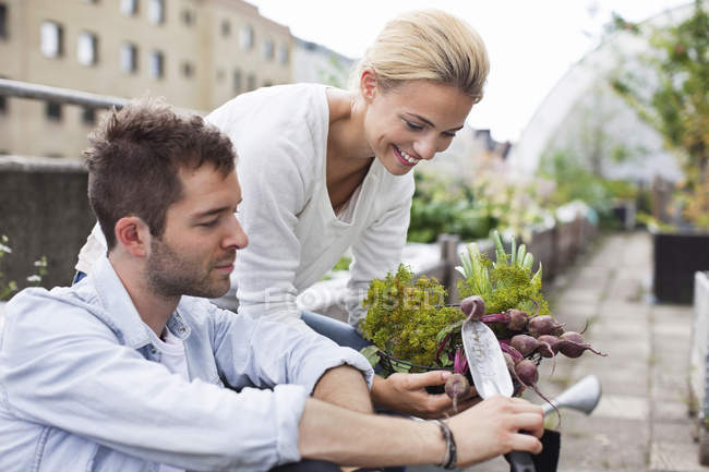 Happy young couple harvesting beetroot at urban garden — Stock Photo
