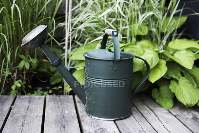 Watering can on wooden plank with plants in background — Stock Photo