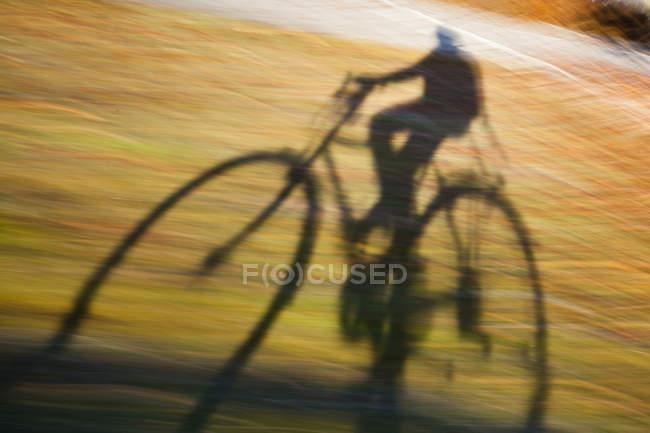Schatten der Person reiten Fahrrad auf Landstraße — Stockfoto