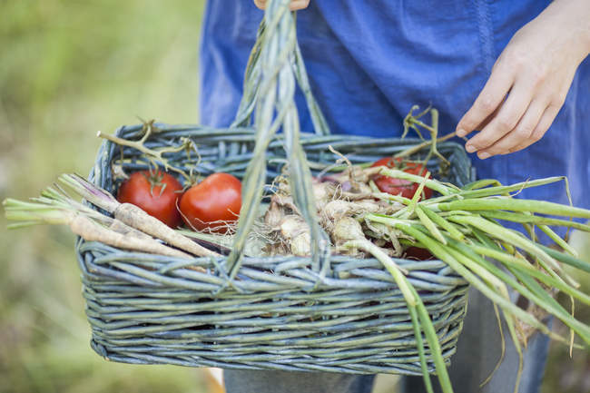 Midsection of woman carrying fresh produce in Wicker basket — Stock Photo