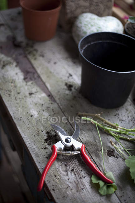 High angle view of garden pruner with carved stems on wooden table — Stock Photo