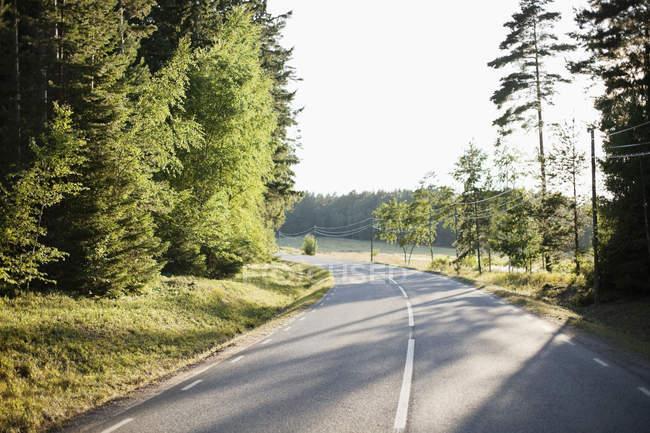 Volta da estrada vazia pela floresta — Fotografia de Stock
