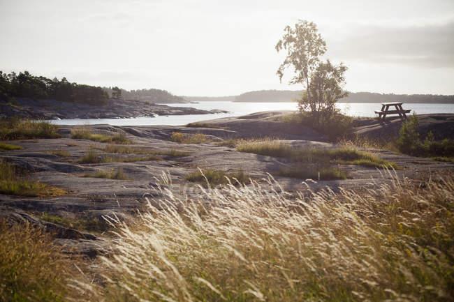 Vista distante da mesa de piquenique vazio pelo lago e arbustos em primeiro plano — Fotografia de Stock