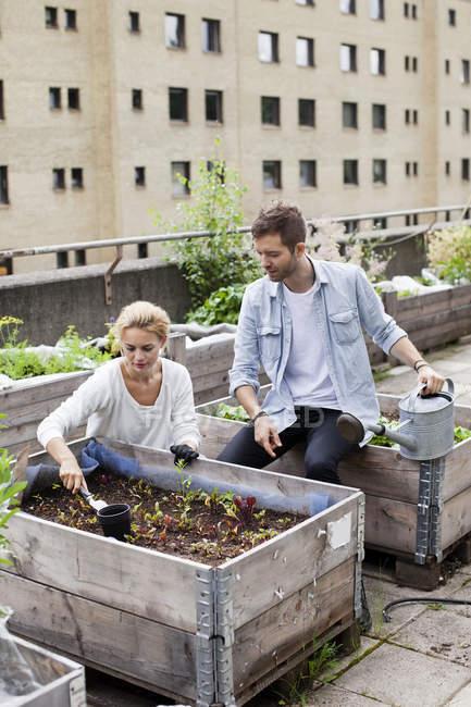 Young Caucasian couple examining plants at urban garden — Stock Photo