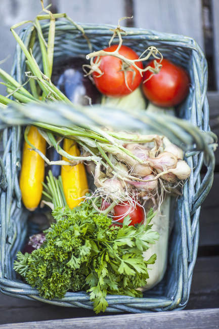 High angle view of fresh harvested vegetables in basket — Stock Photo