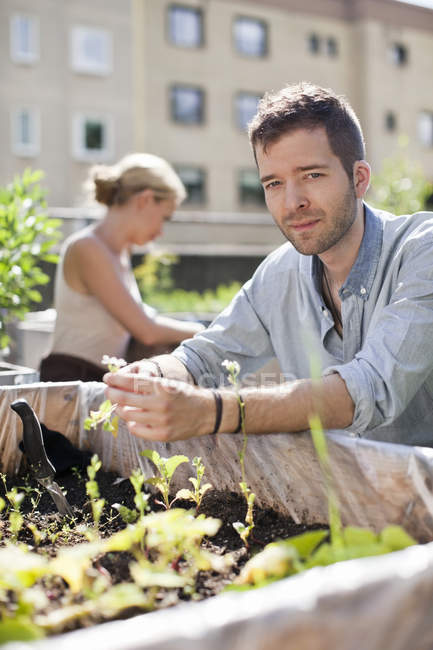 Portrait of young man gardening with woman at urban garden — Stock Photo