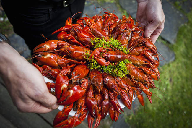 High angle view of man carrying garnished crayfish in tray — Stock Photo
