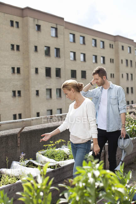 Young Caucasian couple examining plants at urban garden — Stock Photo