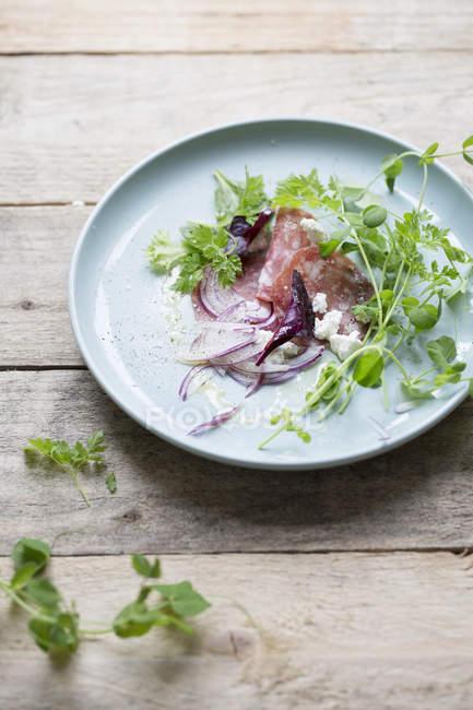 Vista di alto angolo di fette di salame con cipolla e foglie in piastra — Foto stock