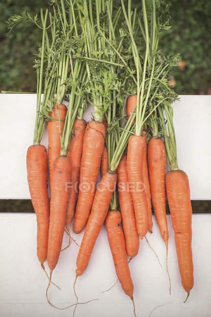 Colpo direttamente sopra appena raccolte le carote sul tavolo — Foto stock