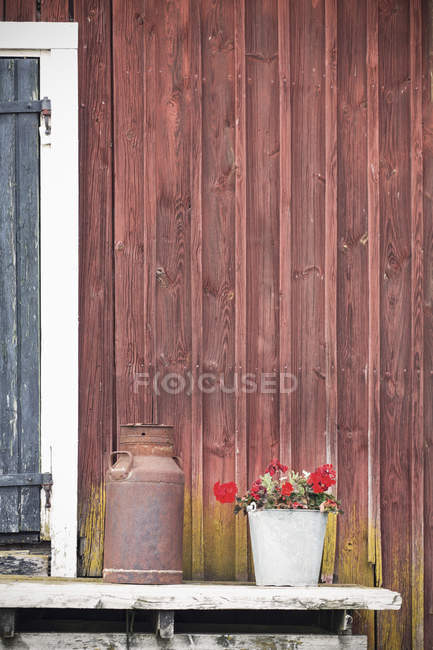 Flower pot and rusty container in backyard of wooden house — Stock Photo