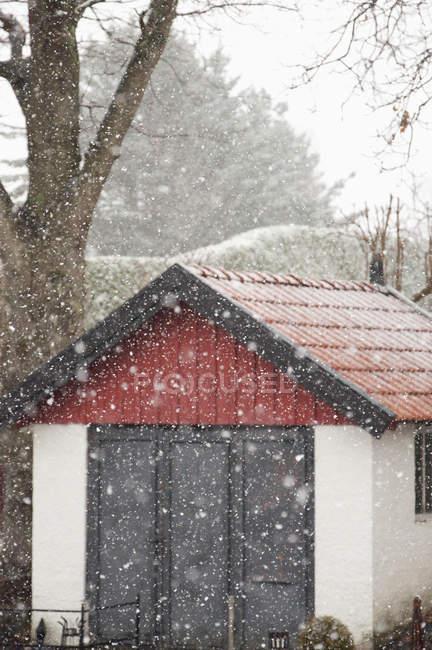 Сарай с красной крышей в шторм снега — стоковое фото