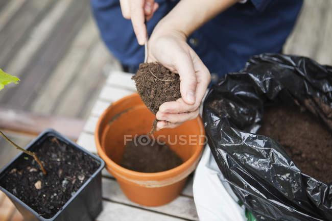 Close-up de mãos femininas colocando o solo em vaso — Fotografia de Stock