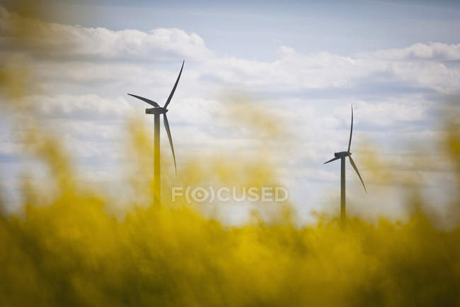 Two wind turbine against cloudy sky — Stock Photo