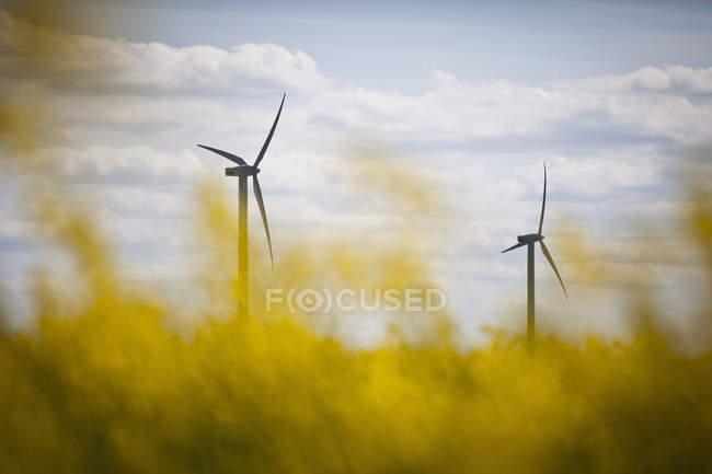 Два вітротурбіни проти хмарного неба — стокове фото