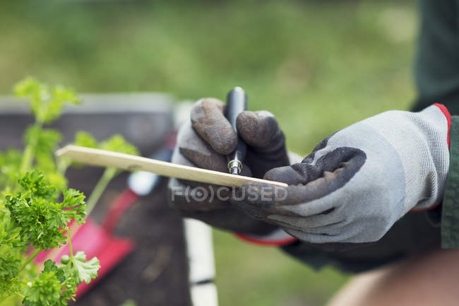 Cropped image of woman writing label for plant in urban garden — Stock Photo