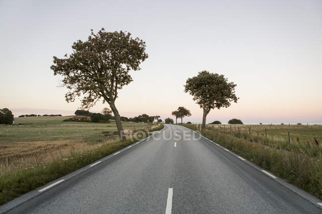 Country road amidst grassy field against clear sky during sunset — Stock Photo