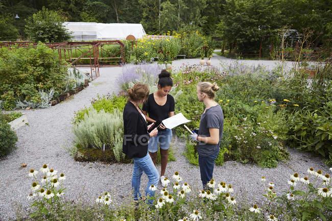 Високий кут зору архітекторів спілкуванні в громаді сад — стокове фото