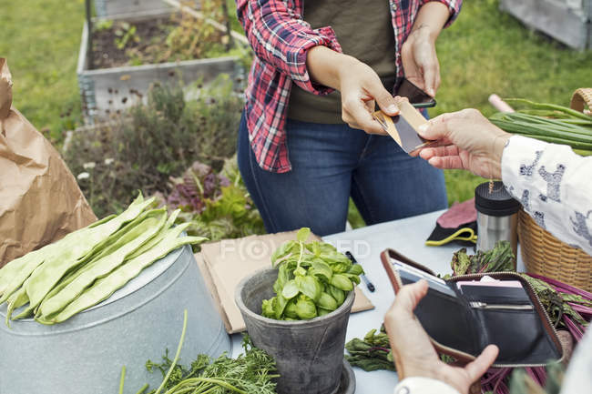 Female customer handing over credit card to woman at vegetable garden — Stock Photo