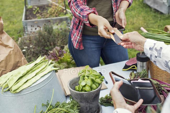 Clientèle féminine remise de carte de crédit à la femme au jardin potager — Photo de stock