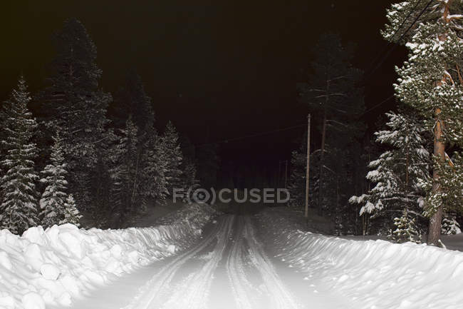 Snow covered road amidst trees at night — Stock Photo