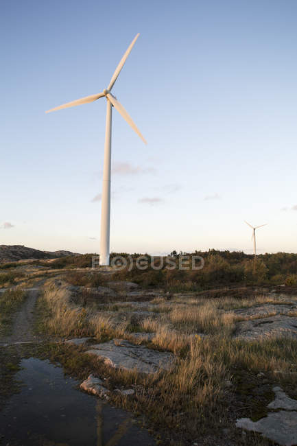 Wind power stations against blue sky — Stock Photo