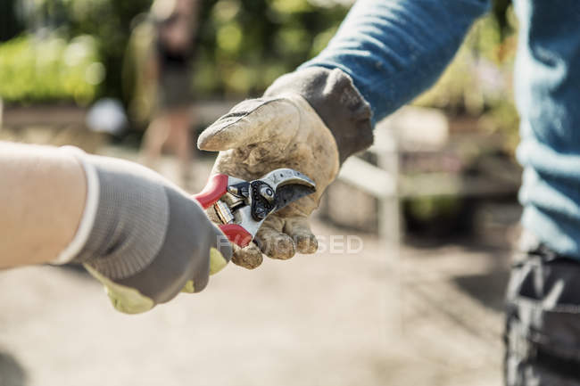 Cropped image of woman giving pliers to man at community garden — Stockfoto