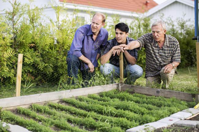 Senior hombre mostrando las plantas a familia en patio - foto de stock