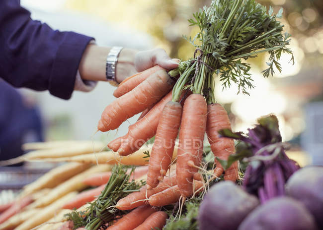 View of woman buying carrots at market stall — Stock Photo