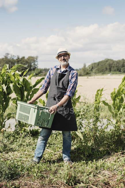 Portrait d'un jardinier mature souriant tenant une caisse et debout à la ferme — Photo de stock