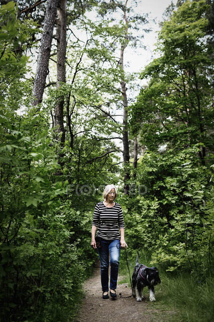 Seniorin läuft mit Hund auf Fußweg zwischen Bäumen — Stockfoto